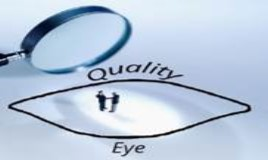 Quality Eye Logo