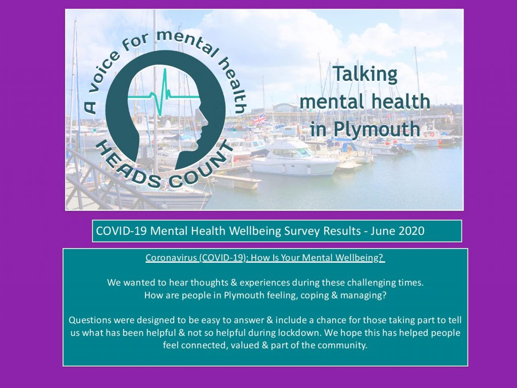 MH Wellbeing Survey